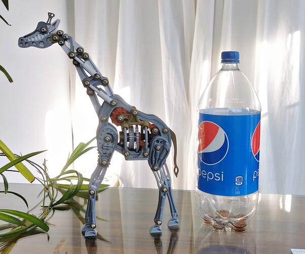 girafe005