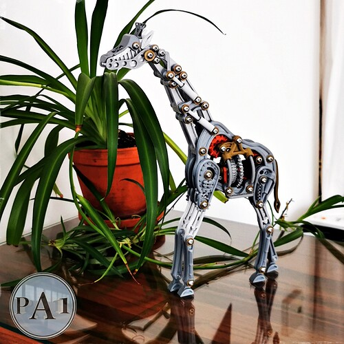 girafe006