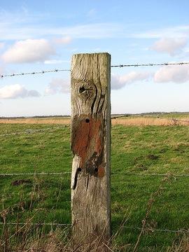 fence_post
